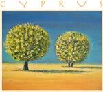 Olive Trees - Cyprus