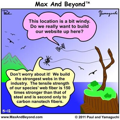 Cartoon: Windy Spider Website