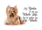 The Yorkie Life