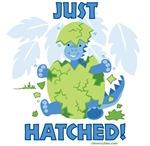 Just Hatched Boy