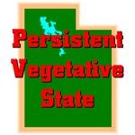 Utah - Persistent Vegetative State