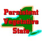 New York - Persistent Vegetatvie State
