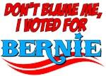 I Voted For Bernie
