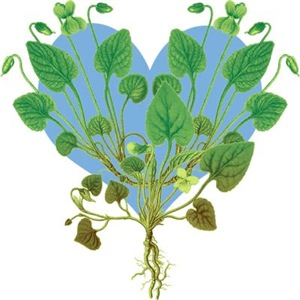 Leaf And Vine Heart
