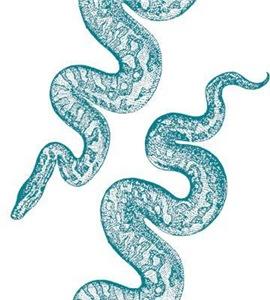 Vintage Snake Graphic