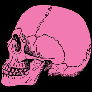 Pink Skull In Profile