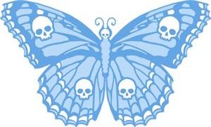 Blue Skull Butterfly