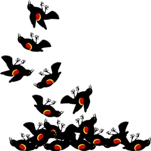 Falling Blackbirds
