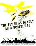 The Fly is as Deadly as the Bomber