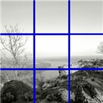 Scenic Tile Collage