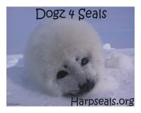Dogs 4 Seals