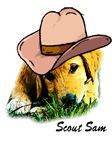 Scout Sam