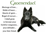 Groenendael Puppy Gifts