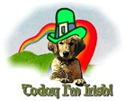 Today I'm Golden Irish!