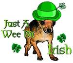 Wee Bit Irish Chihuahua St. Pattys