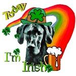 Today I'm Irish Great Dane