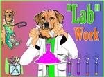 Labrador Retriever_