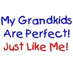 Grandparent Gift Ideas, Shirts, T-shirts