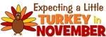 Little Turkey in November