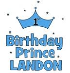 1st Birthday Prince Landon!