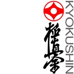 Stylish Kyokushin karate shirts