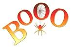 Orange Boo w/Spider