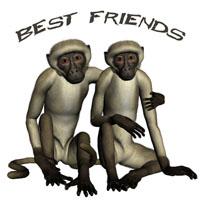 Best Friends Monkeys