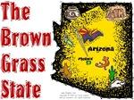 AZ - The Brown Grass State.