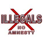 IllegalsX NoAm D21 mx2
