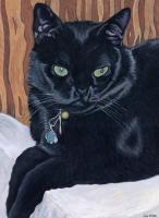MeMe, the black cat