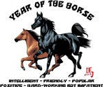 Year of The Horse Characteristics T-Shirt Gifts
