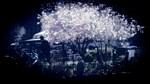 Gandhi Blossom Usq