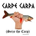 Carpe Carpa