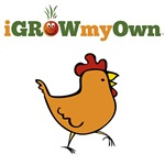 iGrowMyOwn: Chicken - Bumper Stickers, Mugs & More