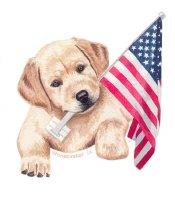 Flag Bearer, Yellow Lab Puppy