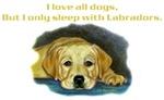 Sleep w/yellow lab, puppy