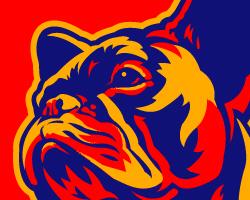 French Bulldog Patriotism