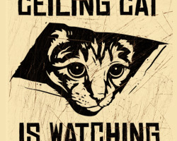 Ceiling Cat is Watching YOU