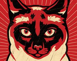 Siamese Cat Dictator
