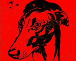 Greyhound Revolution Icon