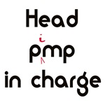 Head PiMP in Charge