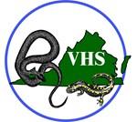 VHS Logo Art