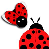 Ladybug Items