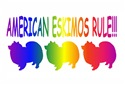 American Eskimo Dogs Rule