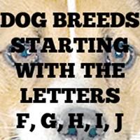 Dog Breed T-Shirts F - J