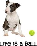 Bull Terrier Life