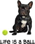 French Bulldog Life