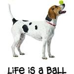 Foxhound Life