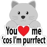 Purrfect Katz