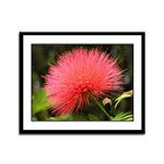 ...Fluffy Flower 01...